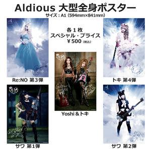 【レアグッズ】Aldious 大型全身ポスター