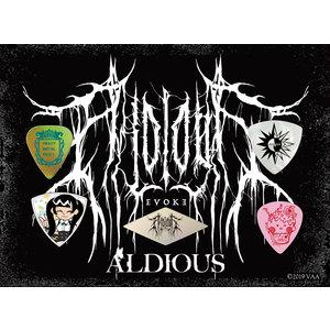 Aldious ピックセット 2019【12/26(土)お昼12時~セール開始】